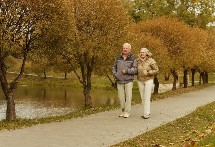 Senior couple walking in the park in autumn for exercise.