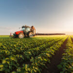 A tractor sprays pesticides on a soybean field